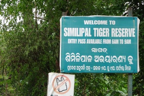 Simlipal National Park Refreshing Attraction for Tourists